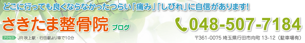 ブログ|行田市 さきたま整骨院